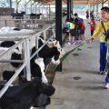 乳牛的家農產品店-乳牛的家農產品店照片