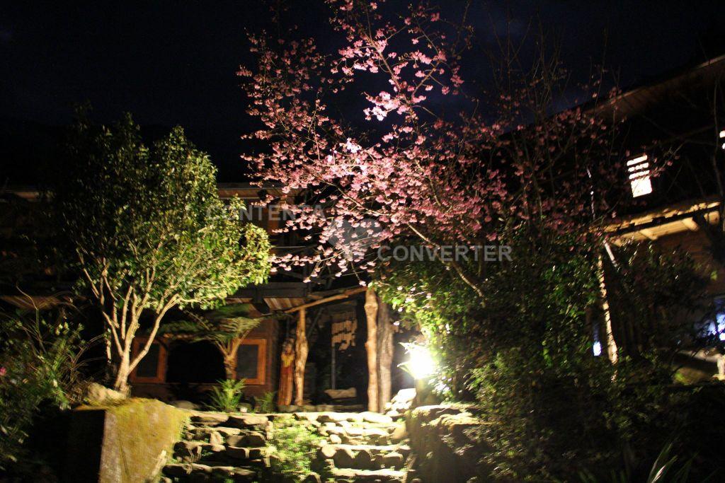 麗京山莊主照片