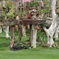 安平區中的迷你盆栽庭院-安平區中的迷你盆栽庭院照片