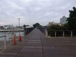真愛碼頭西臨港線自行車道主照片
