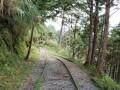 宜蘭 - 太平山見晴懷古步道照片