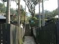 台北 - 菁桐老街照片