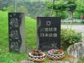 台東 - 紅葉溫泉照片