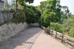 龍崎虎形山生態公園主照片