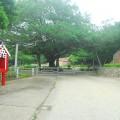 觀光公車路線_金湖榕園遊太湖照片