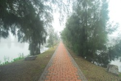 清遠湖濕地主照片