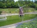 清境小瑞士花園照片