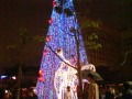 07台北東區聖誕造景照片