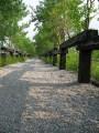 羅東林業園區照片