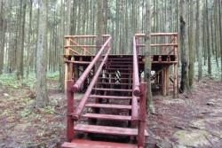 偶像劇「綠光森林」拍攝景點主照片