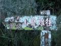雞籠山逍遙遊 ~照片
