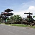 七股紅樹林保護區